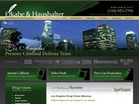 AAA 21134 Los Angeles Drug Defense Lawyer