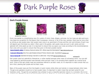 AAA 8336 Dark Purple Roses